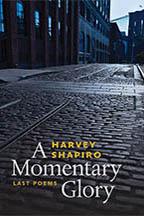 Shapiro - Momentary-croppedR-72-2x3