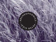 Gizzi-Archeophonics R-300-3